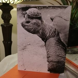 Friendship greeting cards NWT